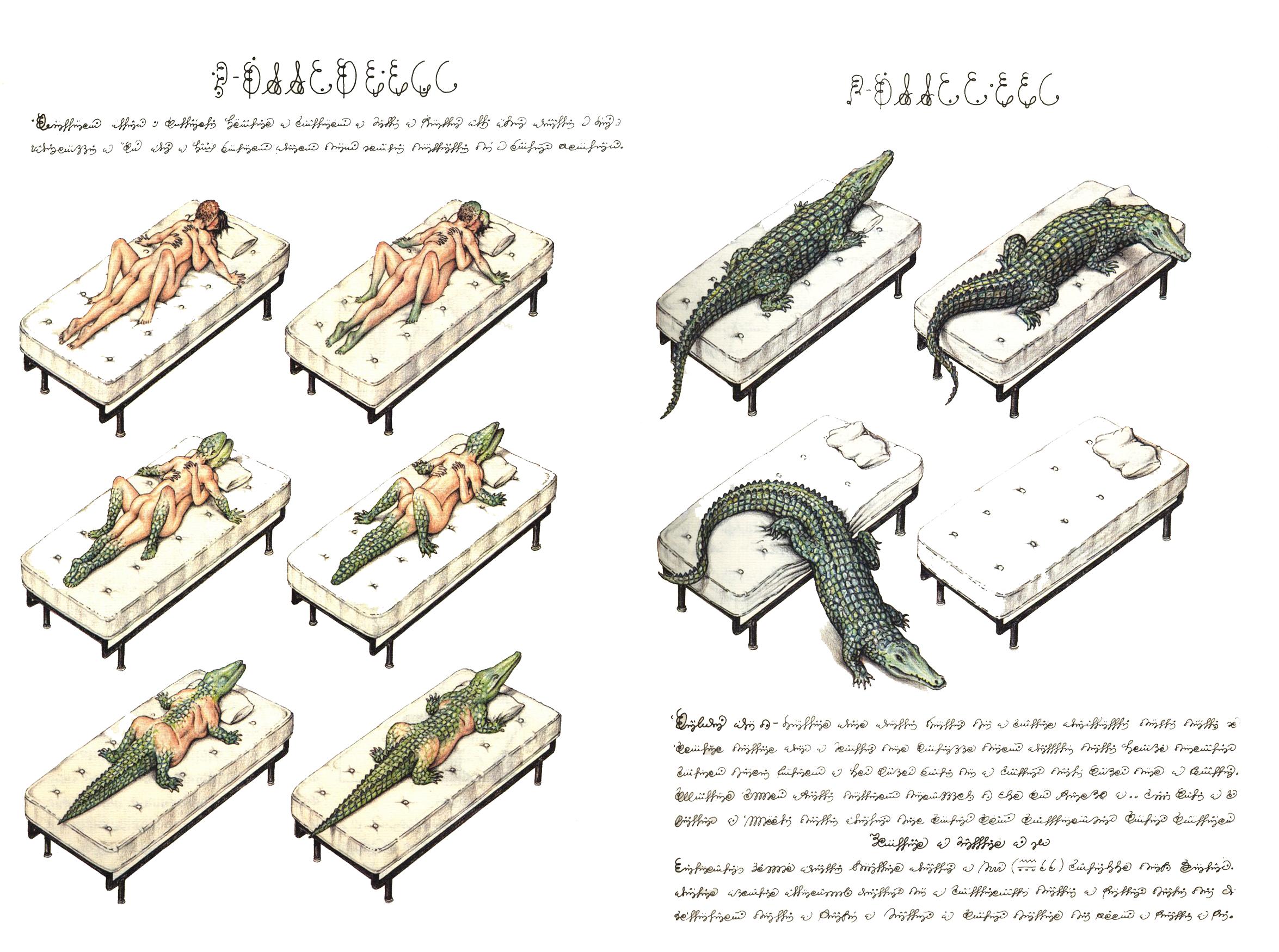 [Image: codex-5.png]